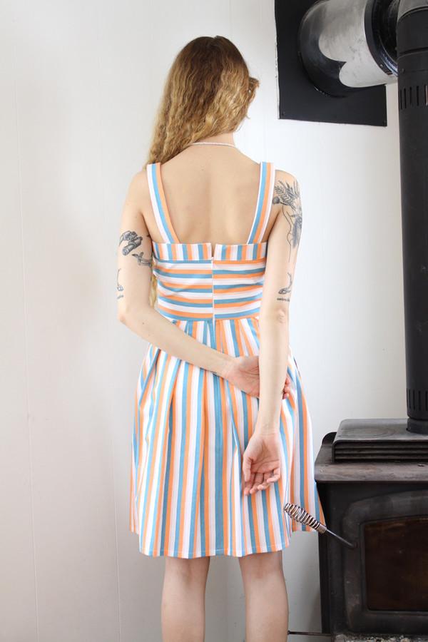 Birds of North America Minivet Dress (Peach/Sky)