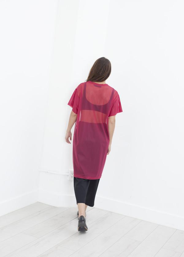Maria Calderara Mesh Over Dress - Pink