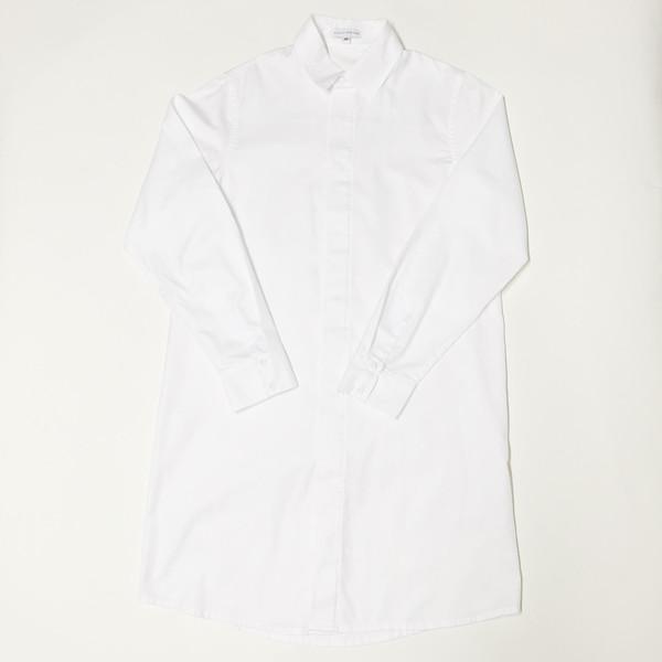 Shelby Steiner Button Down Shirt Dress