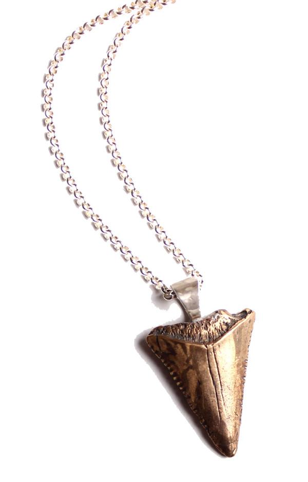 Sarah Dunn Shark Tooth on Silver Chain