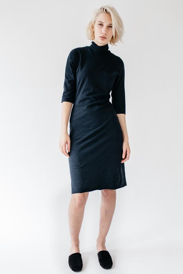 Lauren Winter Turtleneck Dress