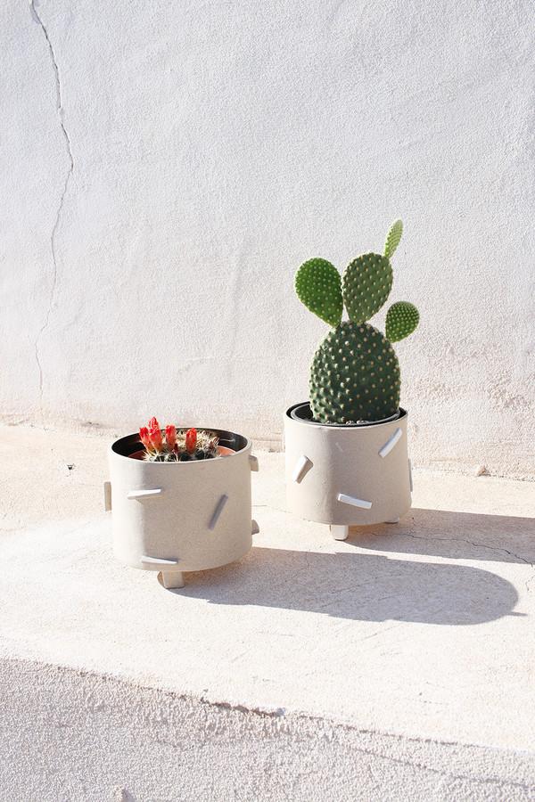 Zola Dash Planters