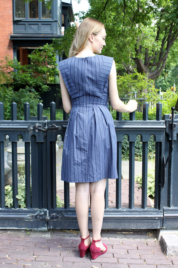 Birds of North America Piping Guan Dress (Blue Stripe)