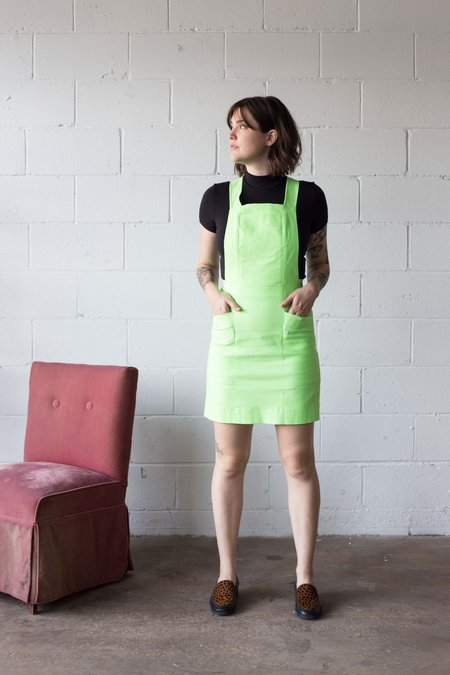 Birds of North America Harrier Tunic - Neon Lime