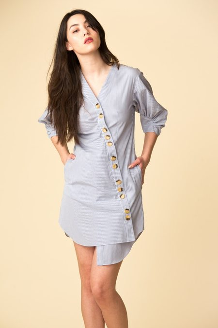 Tibi Jones Striped Shirtdress - blue stripe