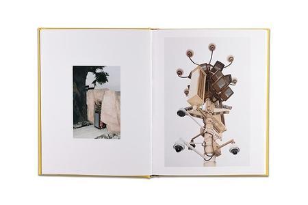 Wang Yishu BORDERLESS book