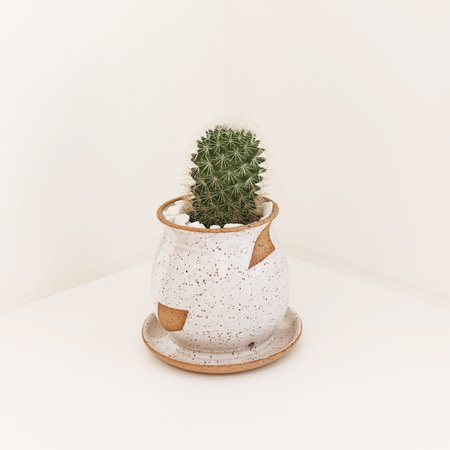 Margaret and Beau Small Geo Planter - Speckled/White