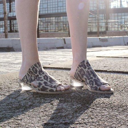 LDTuttle The Stare - Leopard