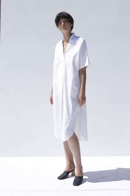 Shaina Mote Calla Dress