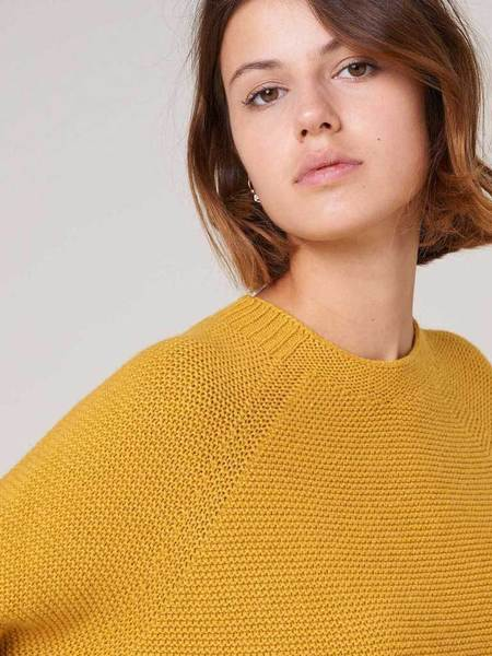 Sessun Caldeira Sweater - Solar