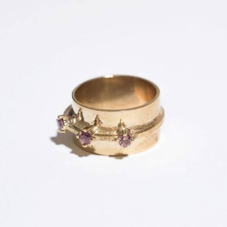 Aesa Passage Ring - Bronze/Garnet