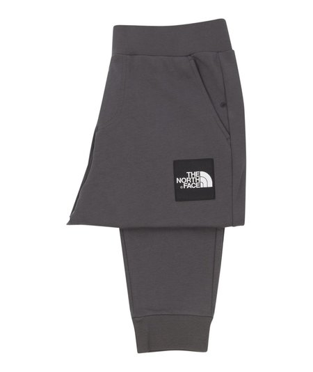 The North Face Fine 2 Pant - Grey