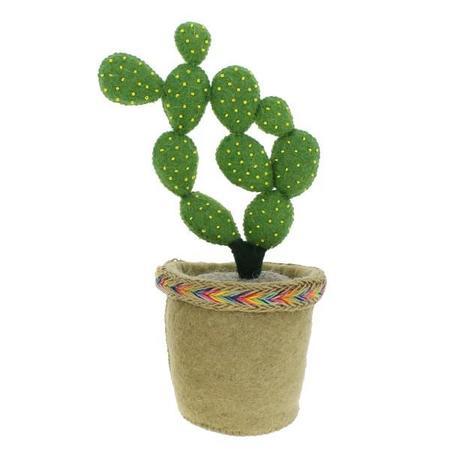 Fiona Walker England Circle Cactus in Pot Bookend