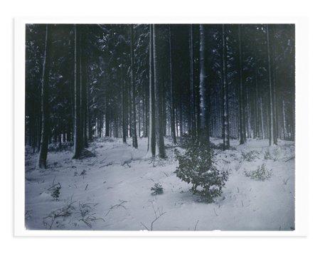 Adam Custins Germany in Snow 2 Art Print