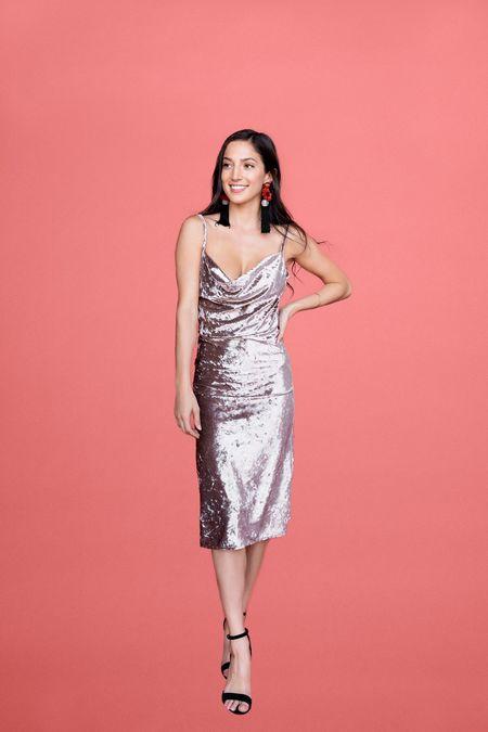 BETWEEN TEN Mika Dress - Silver Velvet