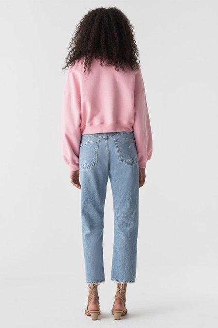 Agolde Parker Easy Straight Jean - Swapmeet