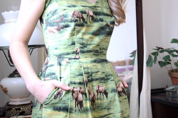 Birds of North America Gander Dress (Elk print)