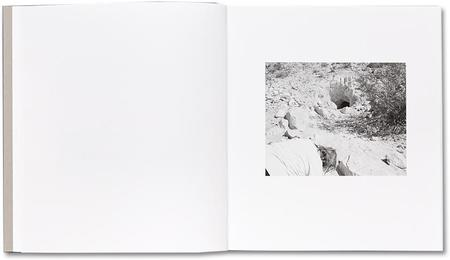 MACK Domesticated Land - Susan Lipper