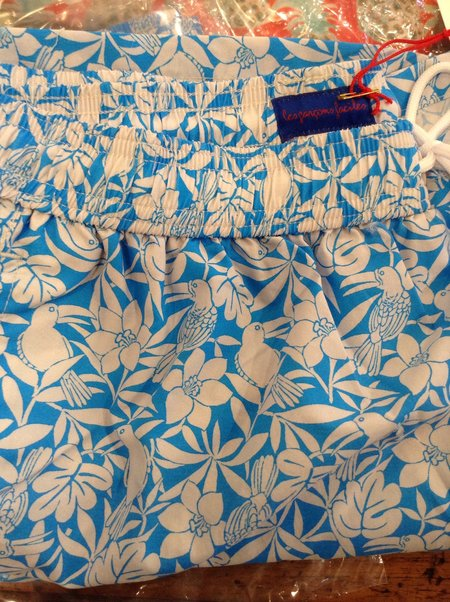 Les garçons faciles Mitchell Acapulco Sports Swimming Short - blue