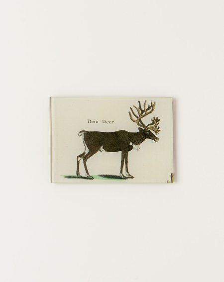 John Derian Reindeer Tiny Tray
