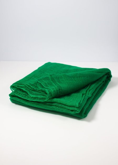 IRIS DELRUBY Flywing cashmere scarf - bright green