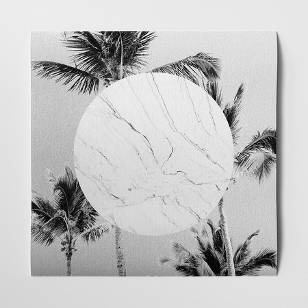 Barclay Haro Art Concepts Marble + Palms