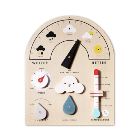 Kids Rock & Pebble My Weather Station