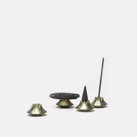 Tennen Agave Holder - Satin Brass