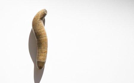 Vintage Kindred Black Fossilized Horn Coral Specimen