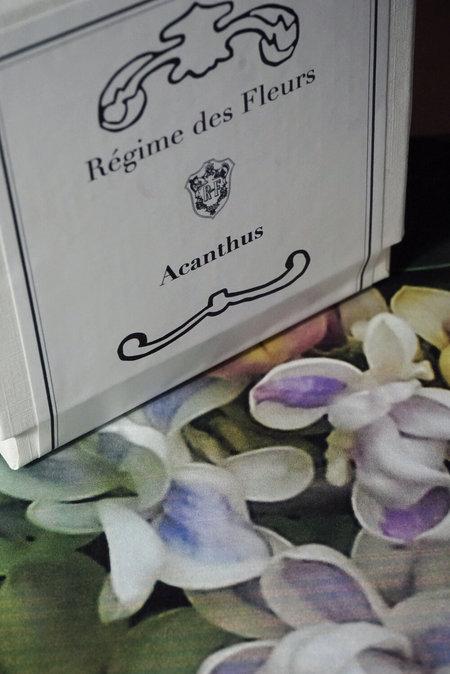 Régime Des Fleurs Acanthus Perfumed Candle