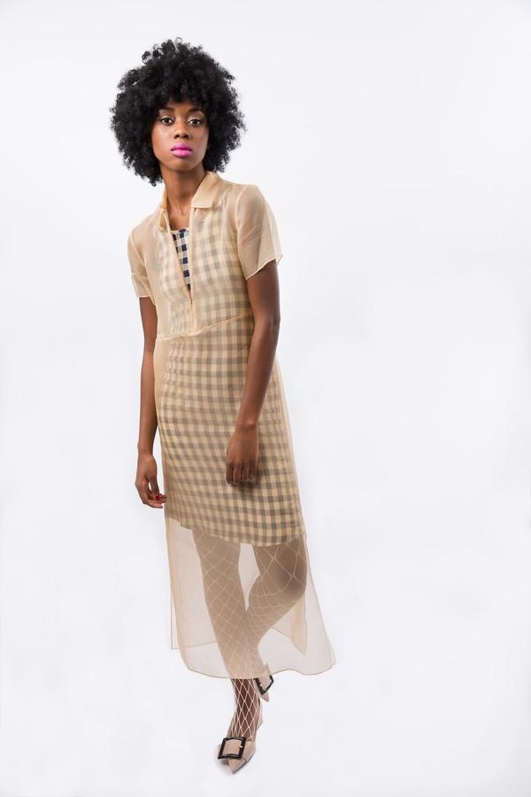 Karolyn Pho Sheer Organza Dress
