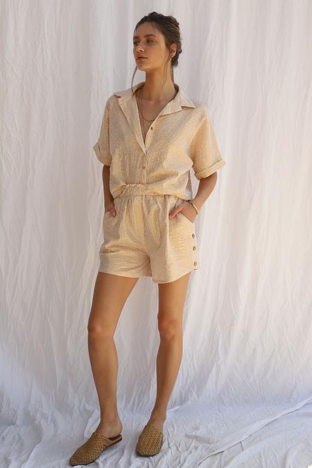 Jen's Pirate Booty Lost Palm Shorts - Gold Stripe Sand