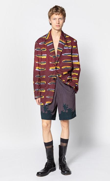 Dries Van Noten Berkleys printed jacket - burgundy