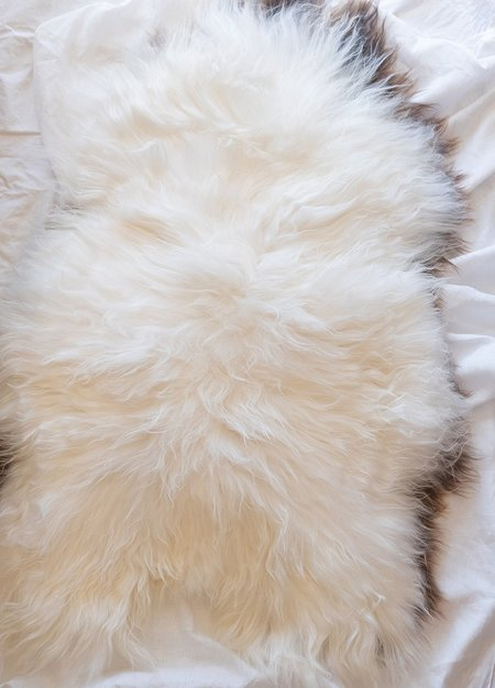 Hawkins New York Icelandic Sheepskin Rug