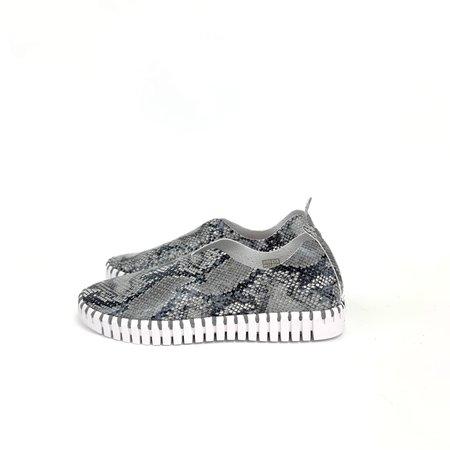 Ilse Jacobsen Tulip Sneakers - Snake