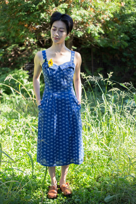 Birds of North America Eider Dress (Blue Bicycles)