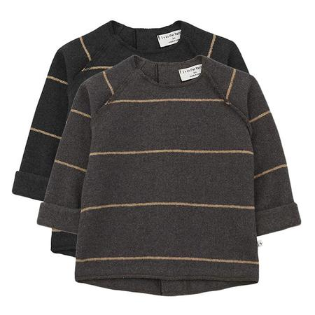 Kids 1+ In The Family Baby And Child Gaspard Sweater With Stripes