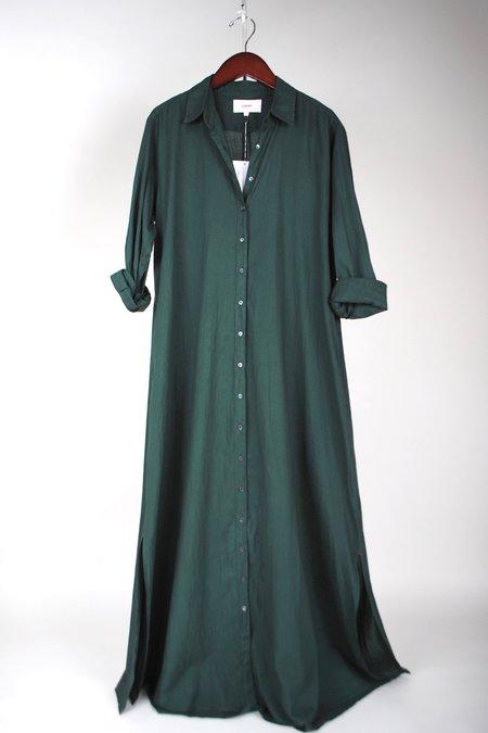 Xirena Boden Dress - Pine