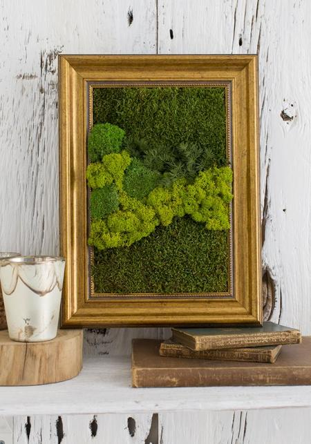 Muno Moss Installation Wall Piece