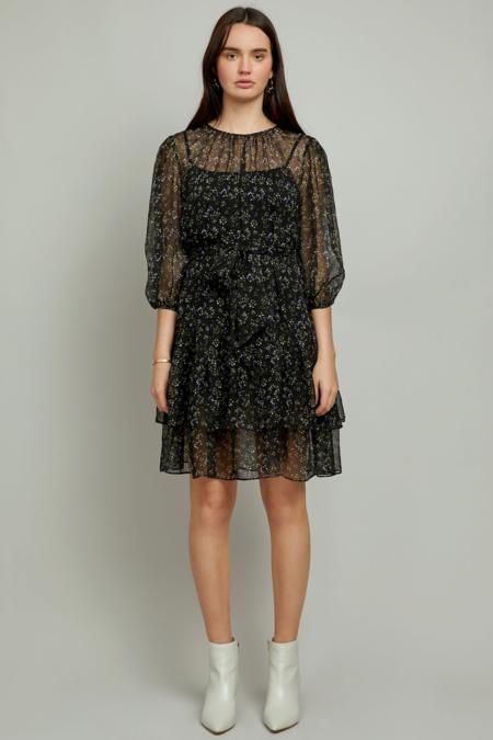 Christy Lynn Amelie Dress - Jardin Noir