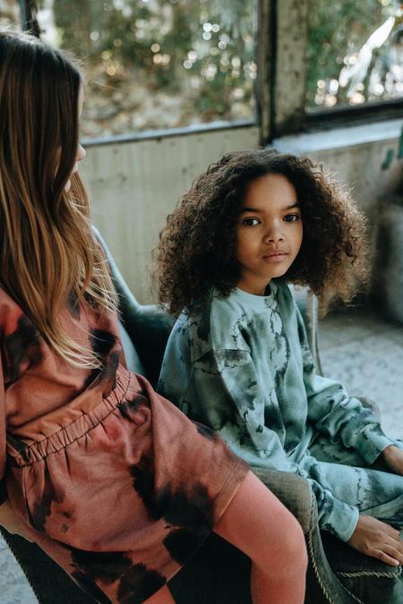 Kids Soft Gallery Ilsa Dress - Ash Rose