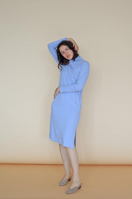 Wolcott : Takemoto Palmer Turtleneck Dress in Evian