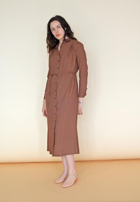 Wolcott : Takemoto Rayon Twill Vashon Dress in Penny