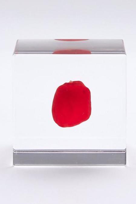 Usagi No Nedoko Sola Cube - Huayruro