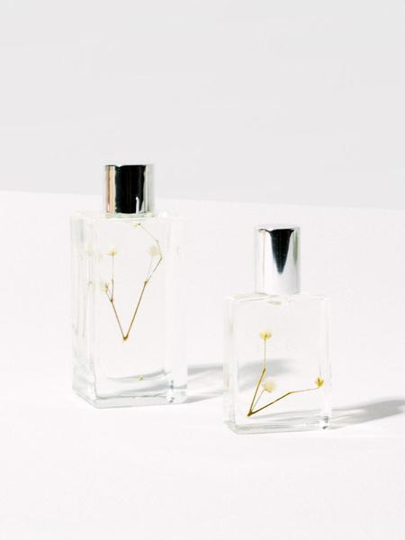 1509 Sophia Fragrance Oil