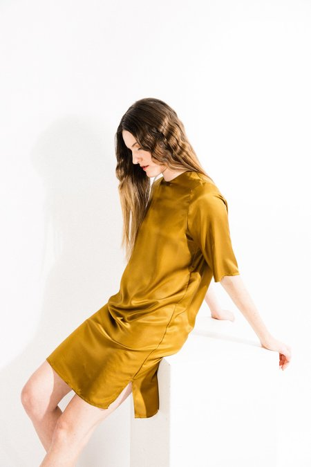 Beth Park Dress - Gold Silk