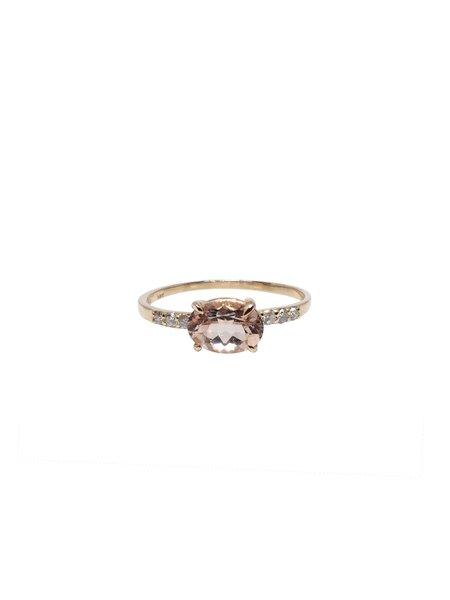 IGWT Adler Ring